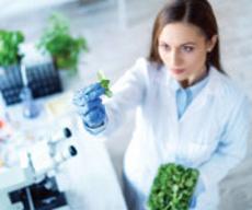 Jak warzywa krzyżowe chronią nas przed nowotworami