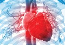 Resweratrol a choroby serca
