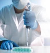 Kwas liponowy odwraca uszkadzanie mitochondrium