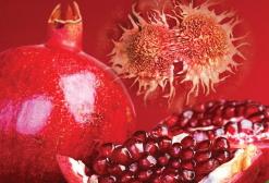 Wyciąg z granatu i jego kwiatów: zapobieganie zespołowi metabolicznemu