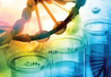 NAD+ wspomaga odnowę komórek macierzystych i regeneruje mitochondria