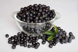 Aronia Berry Improves Endothelial Function