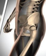 związek między zdrowiem kości a ogólnym stanem zdrowia