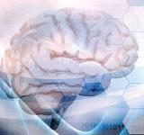 DHEA i udar mózgu