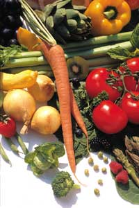 estrogen_Why Plant Foods Are So Important